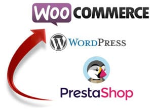 Web18 création de site ecommerce sur Paris et Bourges