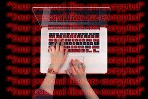 securite maintenance mise à jour site wordpress