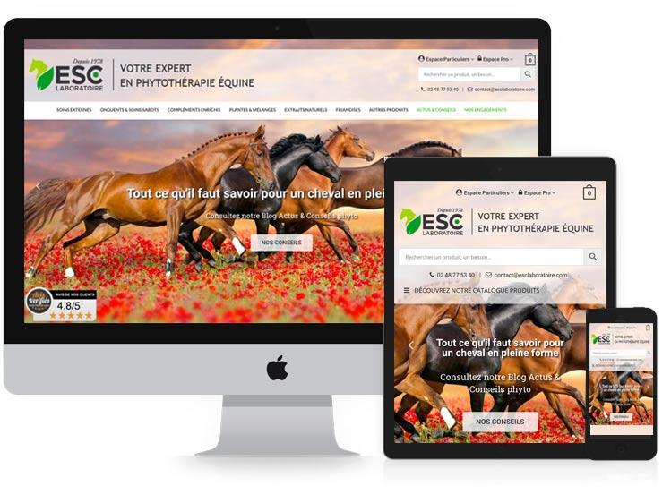 Conception de site Web Agence de rencontres
